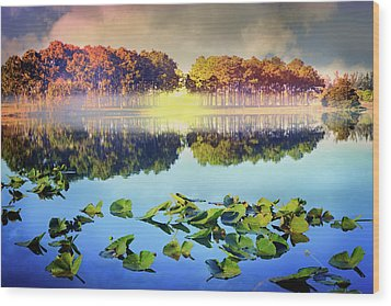 Wood Print featuring the photograph Southern Beauty by Debra and Dave Vanderlaan