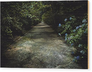 Wood Print featuring the photograph Southern Blue by Jessica Brawley