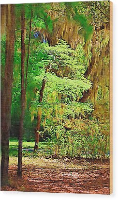 Wood Print featuring the photograph Southern Forest by Donna Bentley