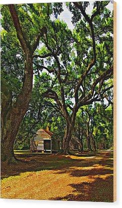 Southern Lane Wood Print by Steve Harrington