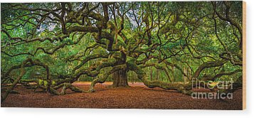 Angel Oak In Charleston Wood Print