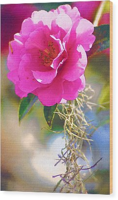 Wood Print featuring the digital art Southern Rose by Donna Bentley