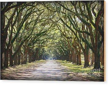 Southern Way Wood Print by Carol Groenen