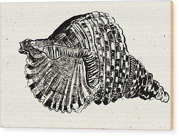 Souvenir  Wood Print by Al Goldfarb