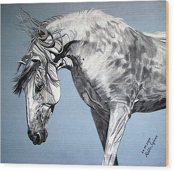 Spanish Horse Wood Print by Melita Safran