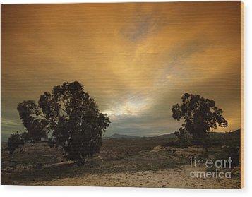 Spanish Landscapes Wood Print by Angel  Tarantella