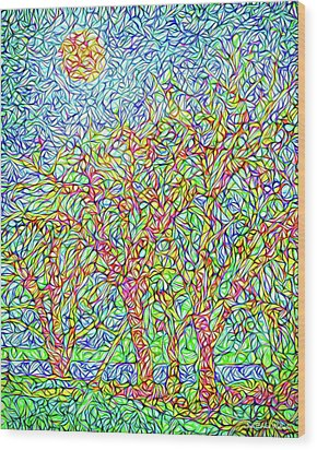 Wood Print featuring the digital art Sparkling Lakeside Trees - Park In Boulder County Colorado by Joel Bruce Wallach