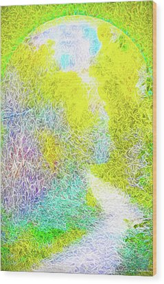 Wood Print featuring the digital art Sparkling Pathway - Trail In Santa Monica Mountains by Joel Bruce Wallach