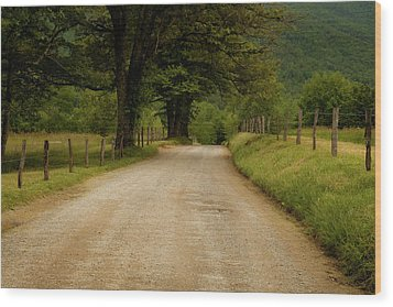 Sparks Lane - Cades Cove Wood Print by Andrew Soundarajan