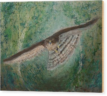 Sparrowhawk Hunting Wood Print