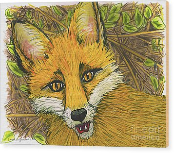 Wood Print featuring the drawing Speaking Fox by Laura Brightwood