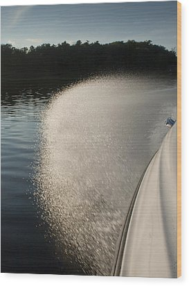 Speed Boat Wood Print by Gary Eason