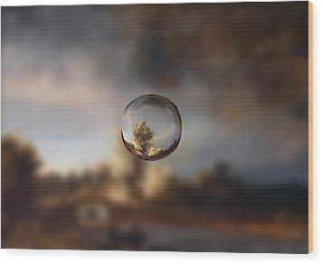 Sphere 13 Rembrandt Wood Print by David Bridburg