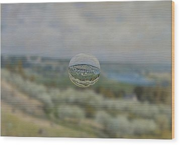 Sphere 24 Sisley Wood Print by David Bridburg