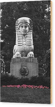 Sphinx In New England Wood Print by Brigid Nelson