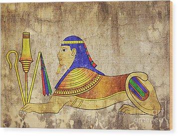 Sphinx Wood Print by Michal Boubin
