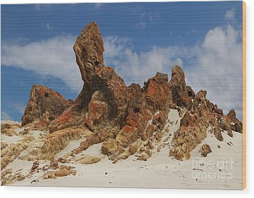 Wood Print featuring the photograph Sphinx Of South Australia by Stephen Mitchell
