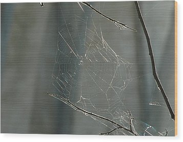 Spider Art Wood Print by Trish Hale