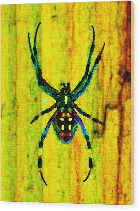 Spider Wood Print by Daniele Smith