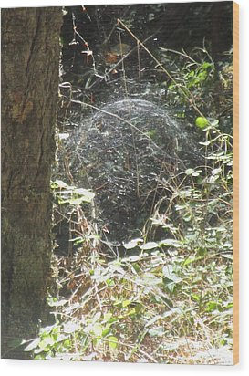 Wood Print featuring the photograph Spider Dome by Marie Neder