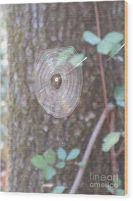 Wood Print featuring the photograph Spider In The Round by Marie Neder