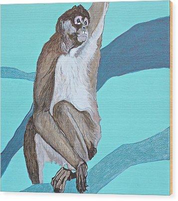 Spider Monkey Wood Print by Jamie Downs