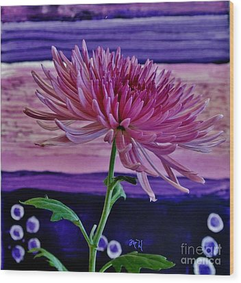 Wood Print featuring the photograph Spider Mum With Abstract by Marsha Heiken