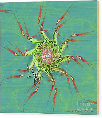 Spiderweb Wood Print by Cheri Doyle
