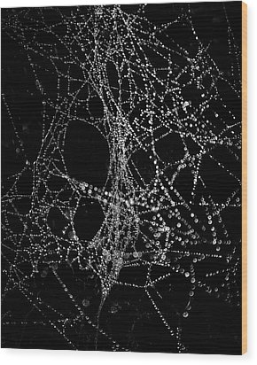 Wood Print featuring the photograph Spiderweb No 4 by Brian Carson