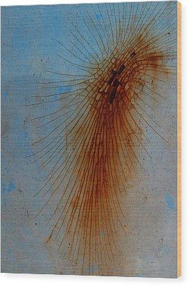 Spidery Wood Print by Elizabeth McPhee