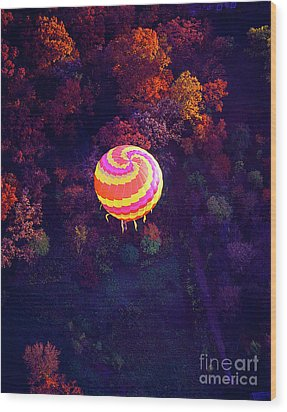 Spiral Colored Hot Air Balloon Over Fall Tree Tops Mchenry   Wood Print