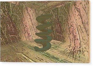 Spiralease Wood Print by Thomas Smith