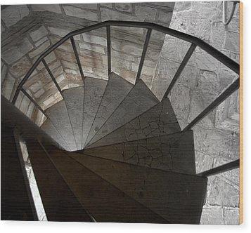 Wood Print featuring the photograph Spiraling Downward by Karen Musick