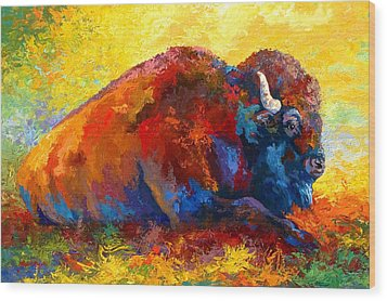 Spirit Brother - Bison Wood Print by Marion Rose