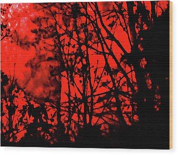 Spirit Of The Mist Wood Print