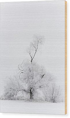 Spirit Tree Wood Print by Dustin LeFevre