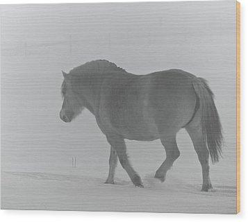 Spirit Two Wood Print by Odd Jeppesen