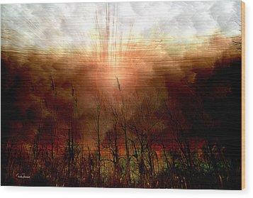 Spiritual Awakening Wood Print by Linda Sannuti