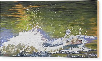 Wood Print featuring the painting Splash by Robert Decker