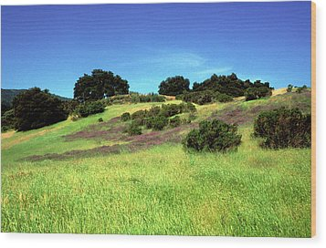 Splendor In The Grass Wood Print by Kathy Yates