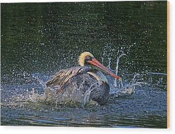 Wood Print featuring the photograph Splish Splash by HH Photography of Florida