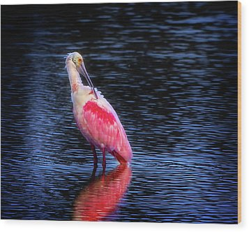 Spoonbill Sunset Wood Print by Mark Andrew Thomas