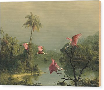 Spoonbills In The Mist Wood Print by Spadecaller