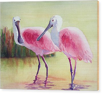Spoonbills Wood Print by Judy Mercer