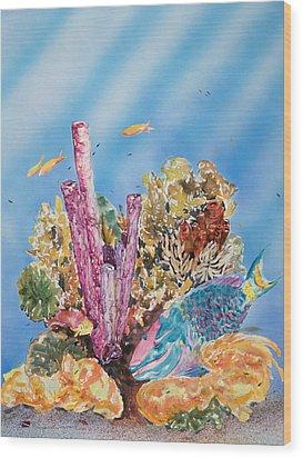 Spotlight Parrotfish Wood Print by Tanya L Haynes - Printscapes