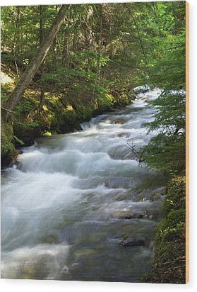 Sprague Creek Glacier National Park 2 Wood Print by Marty Koch