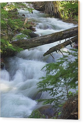 Sprague Creek Glacier National Park Wood Print by Marty Koch