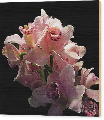 Spray Of Pink Orchids Wood Print