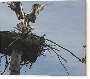 Spread Your Wings Wood Print by Johanne Hammond