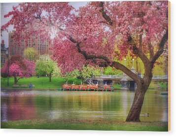 Wood Print featuring the photograph Spring Afternoon In The Boston Public Garden - Boston Swan Boats by Joann Vitali
